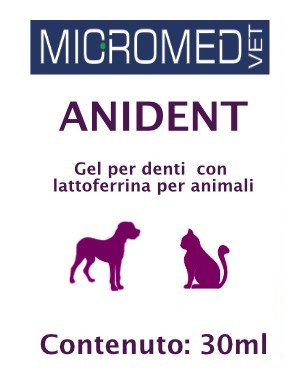 Anident