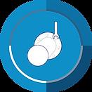 icona monitoraggio 2019.png