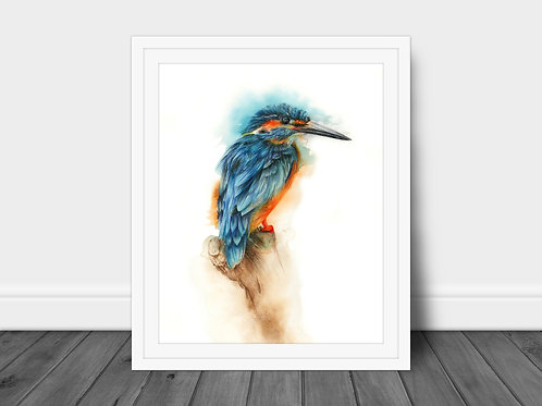 Kingfisher - Original