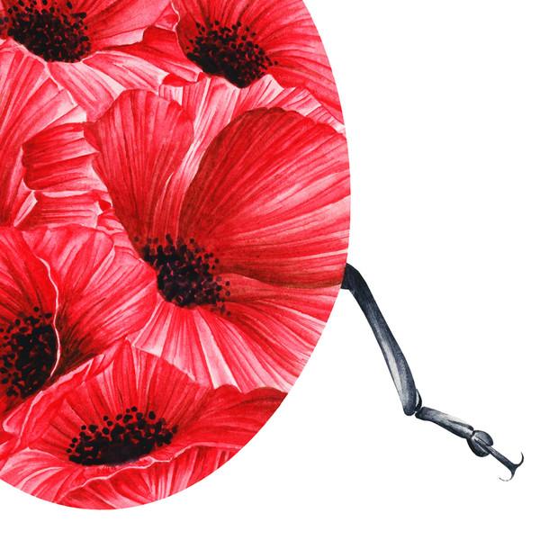 Poppy 1.jpg