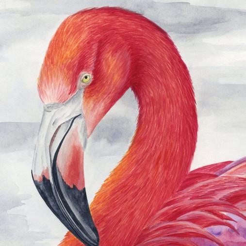 Tropical Flamingo Paradise