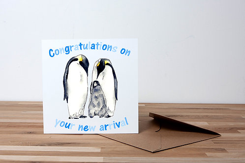 Congratulations - Blue