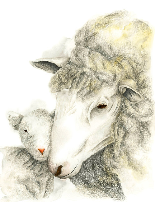 Mother and Lamb