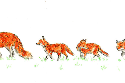 Follow The Leader (Foxes) - Original