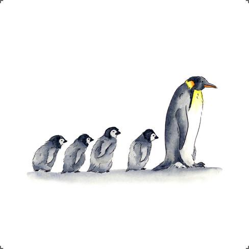 Print - The Penguin Line.jpg