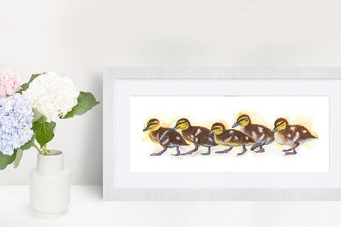 Ducklings - Original