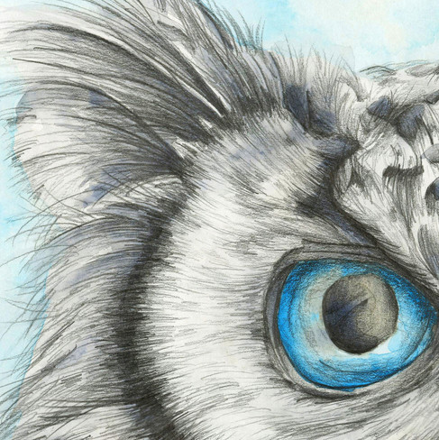 Icy Owl - 9 x 12 + 0.25.jpg