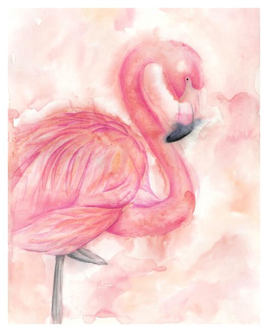 Flamingo - 8 x 10 +0.25.jpg