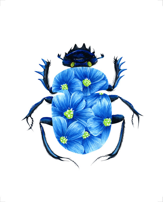 Blue Blossom Beetle - 8 x 10 +0.25.jpg