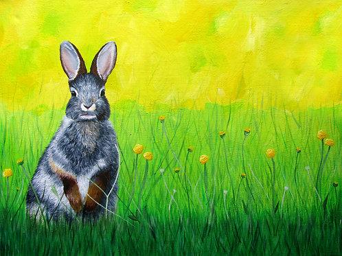 Hare - Original