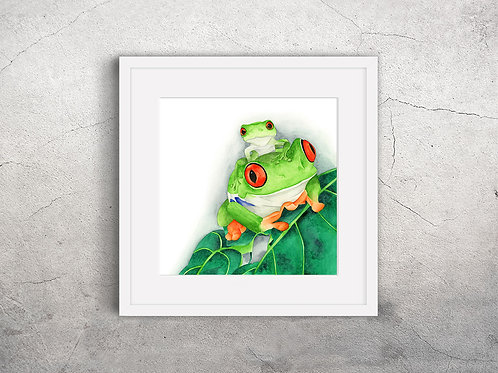 Mothers Love (Red Eyed Tree Frog)