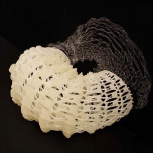 Digital 3D Model