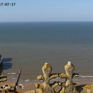 © CPP 2020 webcam (14).jpg