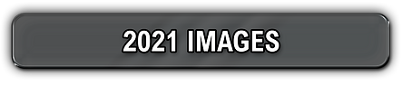 2021 images.png