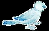 bird_water2.png