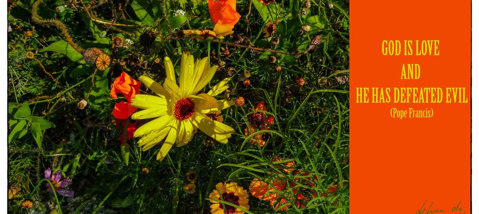 Blume_Ostern.jpg