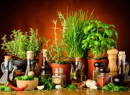צמחי מרפא - לא למקצוענים בלבד