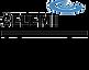 logo_celemi.png