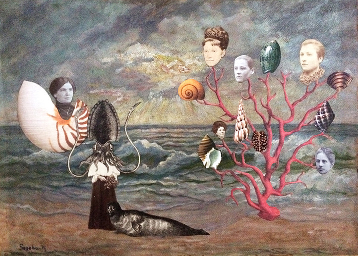 THE BIRTH OF VENUS | 2017 | Mixed Media Collage