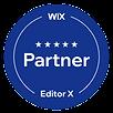 Wix website expert
