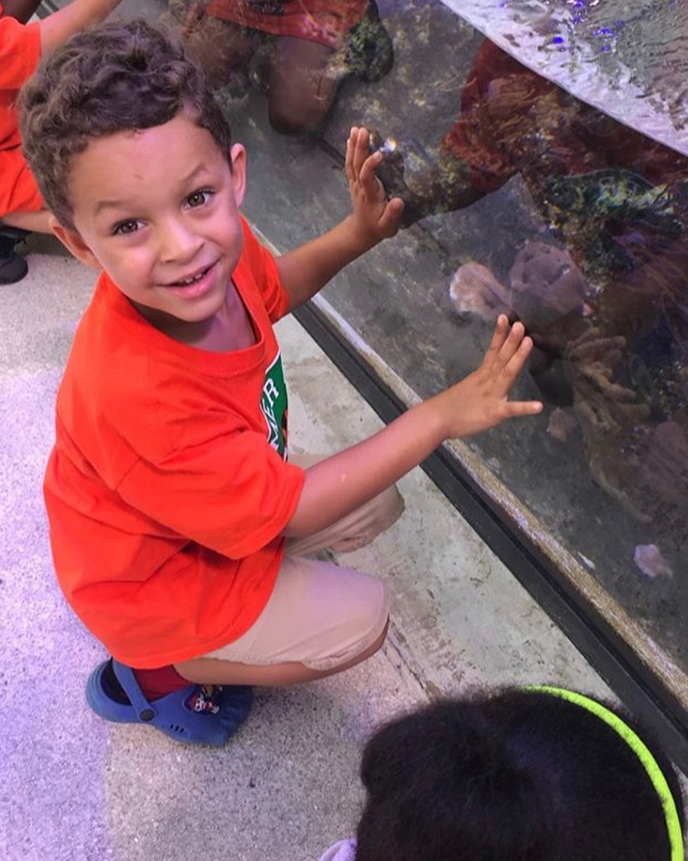 Little Tigers Fascinated with with marine life