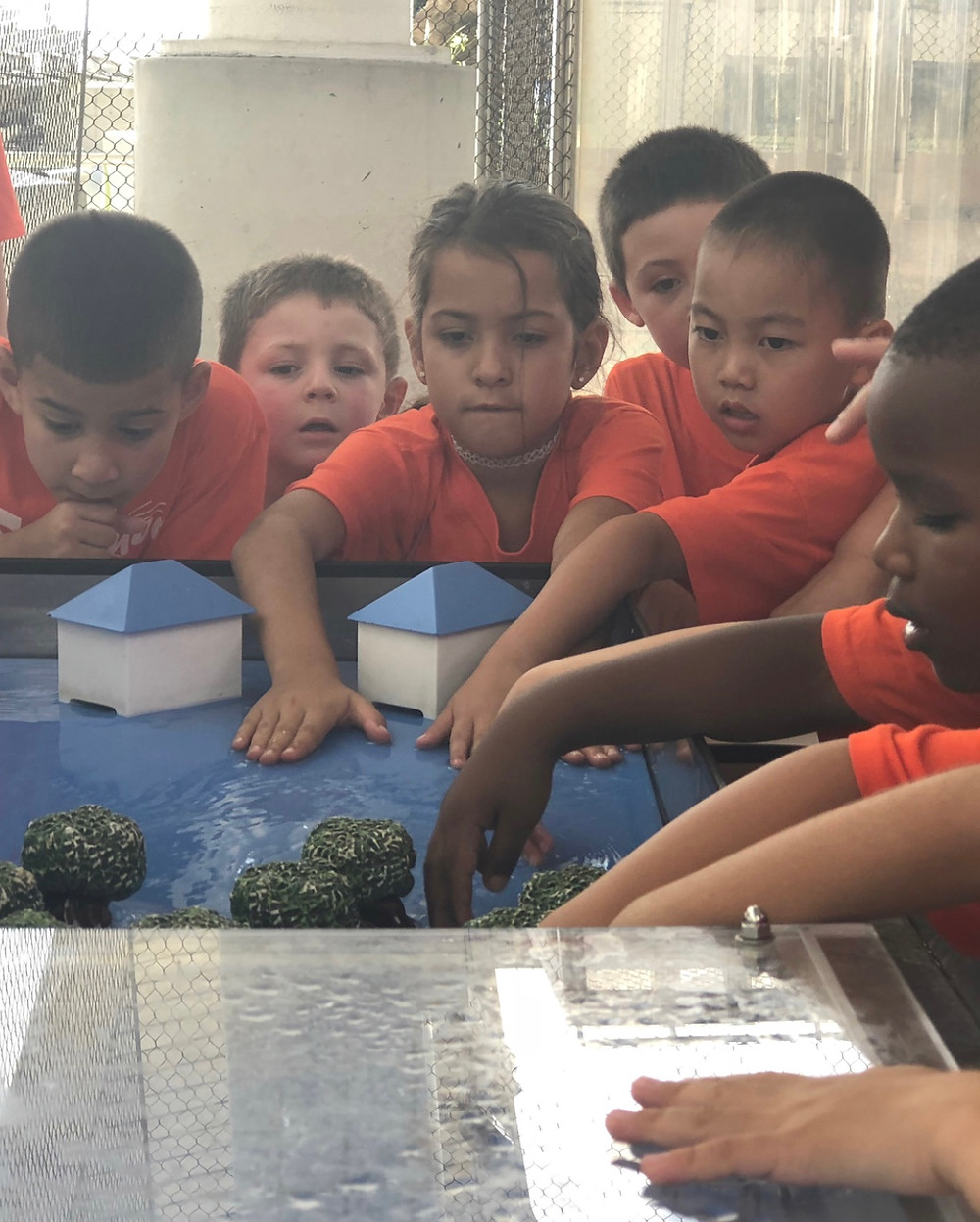 Little Tigers getting hands-on experience