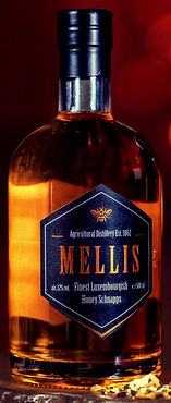 MELLIS GLASS_edited.jpg