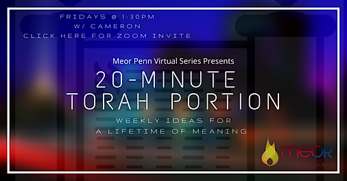 Meor Penn Virtual Programming-5.png