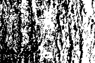 buchr%C3%BCcken_zusammemn-01_edited.png