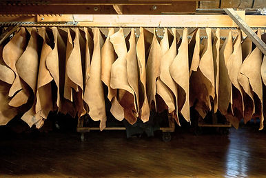 leather tanning 2.jpg