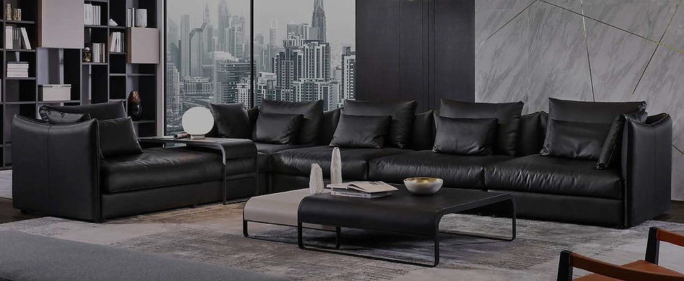 A02 sub-shop sofa 2 30%bk.jpg