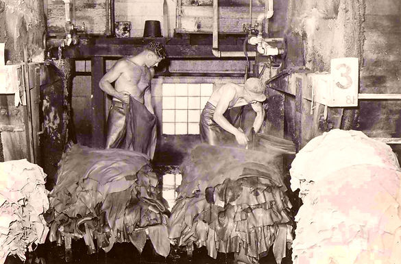 leather tanning 1.jpg