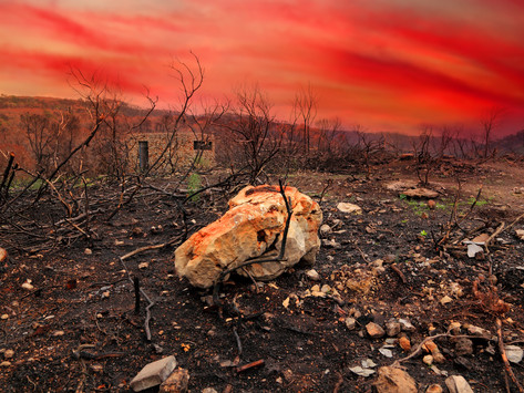 Can Reiki Mitigate Climate Change?