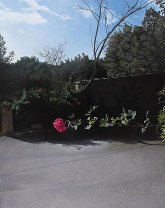 Giuseppe Colombo, La rosa orizzontale