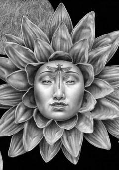 Miriam Tritto, Lotus Rebirth