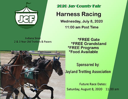 harness racing 20.jpg