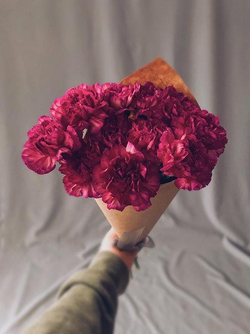 11 ярко-розовых диантусов
