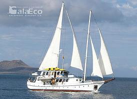 La mejor manera de disfrutar de Galapagos es navegando en el Velero Cachalote