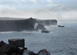 La Isla Española es el hogar de las fragatas y muchas aves más