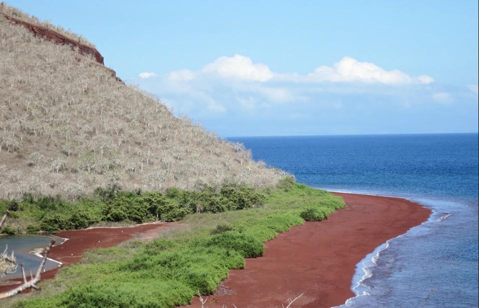 Galapagos tours a Rábida playa roja