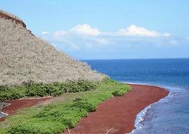 Al conocer la isla rábida te sorprenderá sus playas de arena roja.