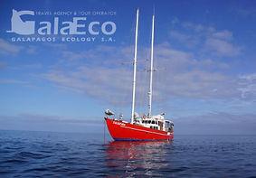 Viaja a Galapagos por 4 días en el Velero Encantada