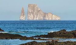 Conoce cada rincón de Galapagos en nestros diferentes paquetes