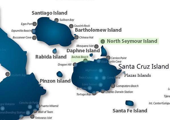 Tour diario en barco para conocer Seymour Norte