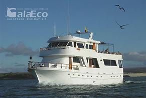 Viaja a Galapagos por 4 días en el Yate Darwin