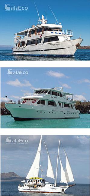Tu próximo tour en barco será la mejor experiencia gracias a nuestro profesionalismo