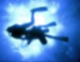DivingGalapagos, Snorkel, Dive