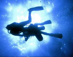 Galaeco_Galapagos Dive