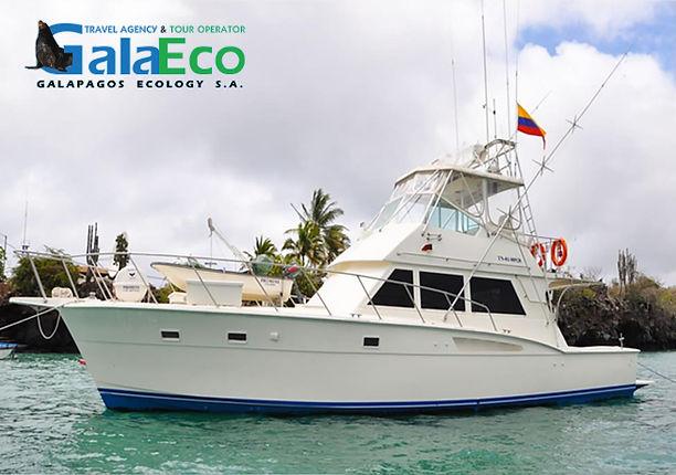Tour diario en barco para conocer Galápagos