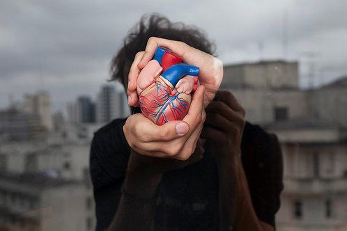 Felipe Morozini - Coração de um sonhador